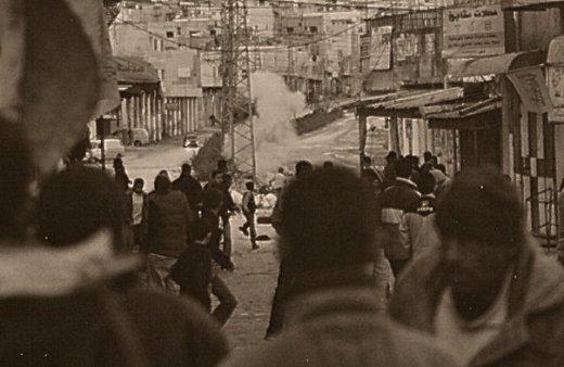 palestine 8